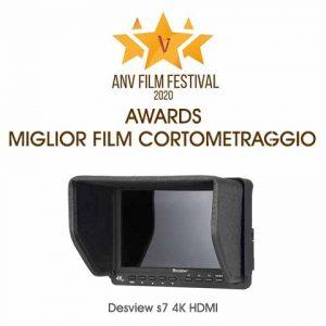 award best corto video