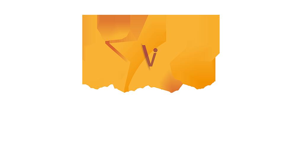 LOGO ANV FILM FESTIVAL